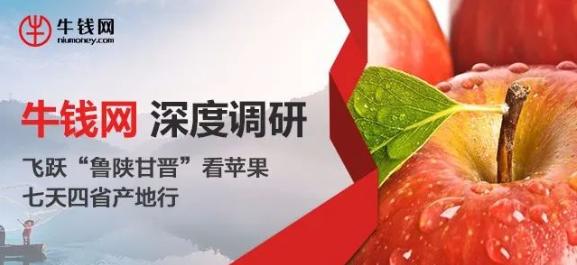 苹果调研.png