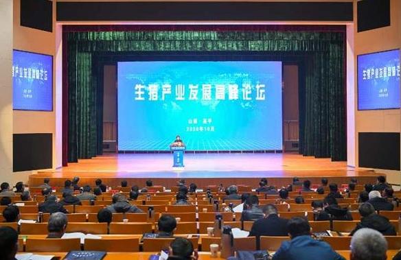 """打响""""特优牌"""" 山西生猪产业发展高峰论坛在高平市举行"""