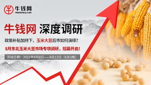 【大豆期货调研】政策补贴加持下,玉米大豆后市如何演绎?8月东北玉米大豆市场专项调研