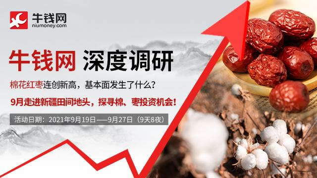 【棉花红枣调研】棉花红枣持续发力,基本面有哪些改变?9月产业大咖带您走进新疆主产区,探索棉、枣后市投资机会
