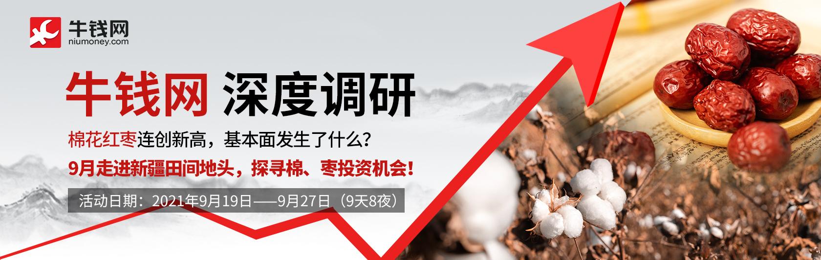 2021年9月棉花红枣2 (2).jpg