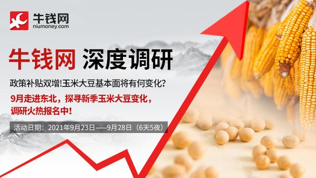 【玉米大豆调研】补贴政策加持下,高价能否长存?9月探寻新季玉米大豆变化,调研火热报名
